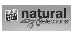 maple-leaf-natural-selections
